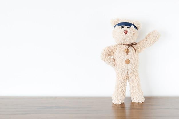 Teddy bear is a traveler