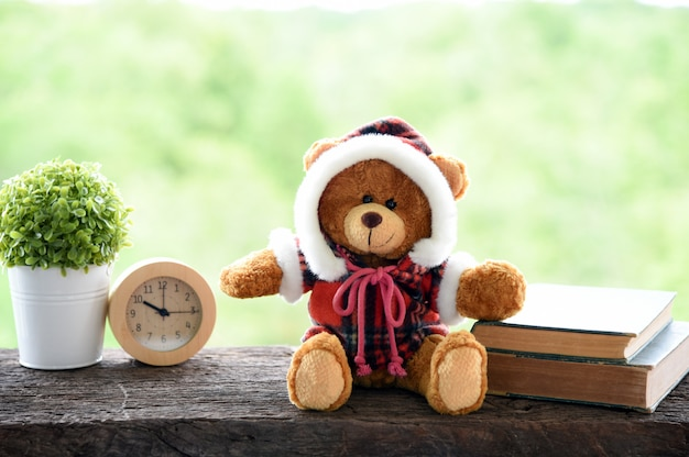 Teddy bear on the old wood table green nature background