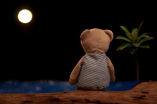 Teddy bear sitting alone looking at the moon and sea.