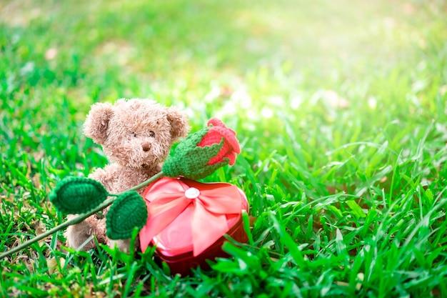 Плюшевый мишка сидит с красной розой и сердечным подарком на траве. валентина концепции.