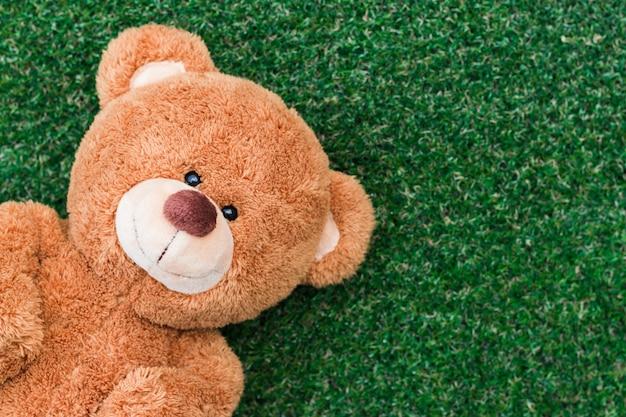 The teddy bear slept on the grass happy face