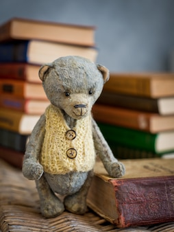 Teddy bear teddy reading book in the library