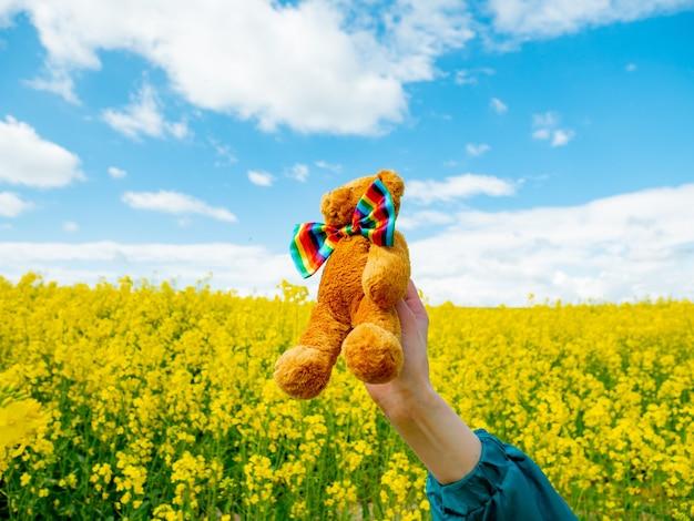 春の菜種畑で虹の蝶ネクタイとテディベアのおもちゃ