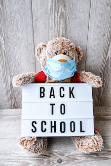 Teddy bear wearing mask with backpack