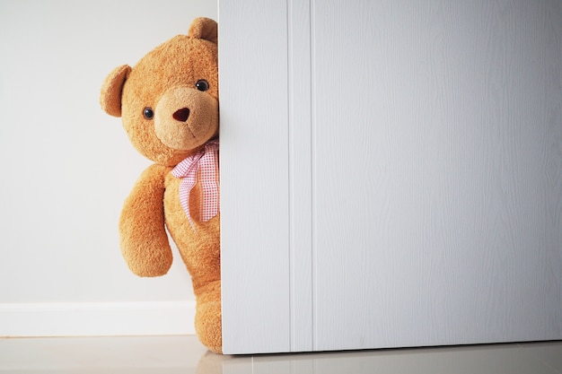 Teddy bear with brown hair behind open door.