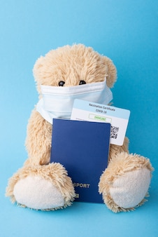 Teddy bear with international passport and vaccination certificate