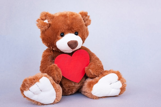 Teddy bear with red heart. valentines day gift.