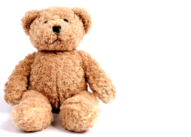 Teddy bear with white backdrop.