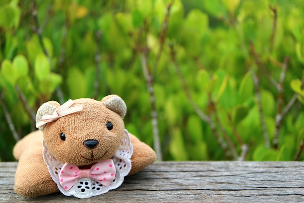 Teddy bear on the wooden fence with blurred vibrant green golden mangrove field