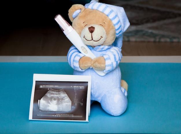 妊娠検査を行うテディ。妊娠検査による超音波スキャン