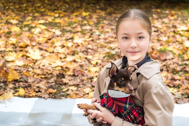Teenage girl is holding a toy terrier dog in her arms in the foliage of fall yellow leaves