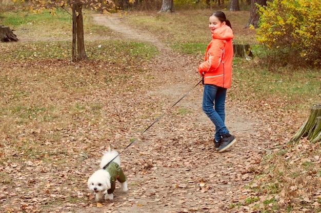 10代の少女がオーバーオールでかわいい白い犬と秋の森を歩く