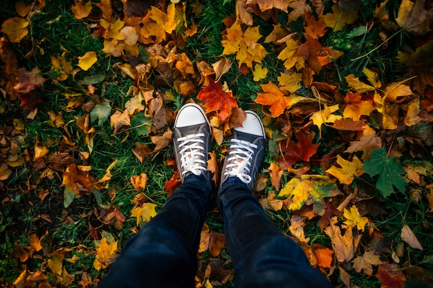 Teenage legs in sneakers on ground with autumn leaves