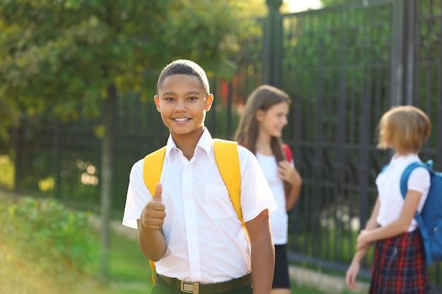 学校に行くティーンエイジャーの少年と彼の友人