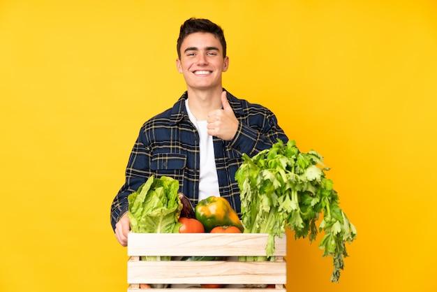 Подросток фермер человек со свежесобранными овощами в коробке, давая недурно жест