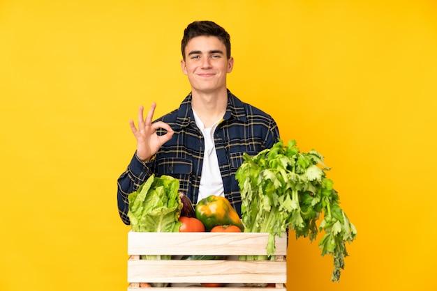 Подросток фермер человек со свежесобранными овощами в коробке, показывая знак «ок» с пальцами