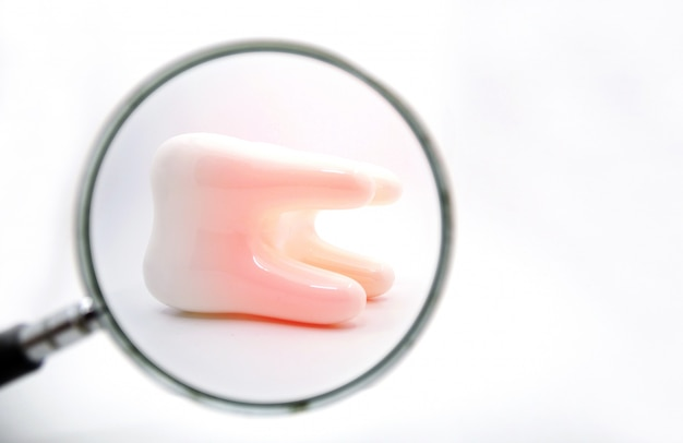 Teeth with magnifying glass on white