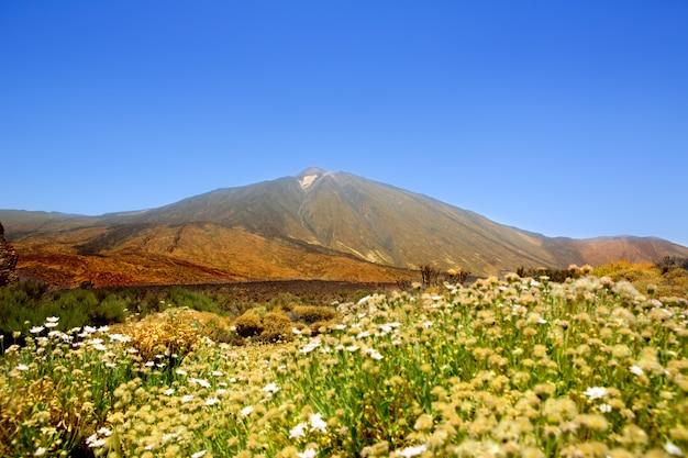 Teide national park mountain in tenerife