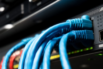 Telecommunication Ethernet Cables Connected to Internet Switch