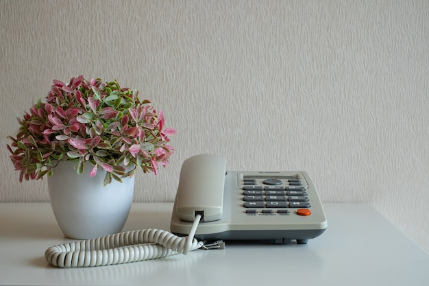 Telephone and flower pot on the desk on gray wall