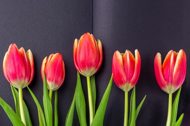 記念日にテンプレート空白のグリーティングカード。テキストまたはレタリングのためのスペースを持つ春の赤いチューリップで飾られた開いた黒い日記。