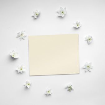 Template made of blossoming white flowers and a paper card on white background