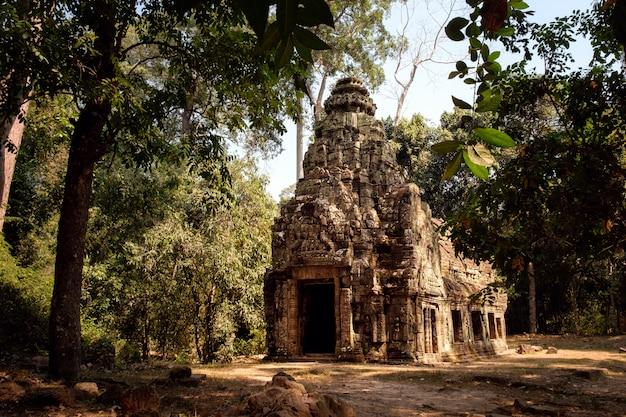 Temple in jungle, angkor wat complex in cambodia
