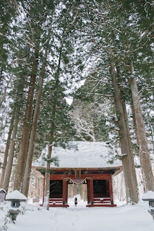 Temple in snow forest at togakushi shrine, japan