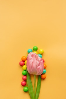 Tender pink tulip and a lot of vivid colored balls around in bottom of pastel yellow background. flat lay. copy space. concept of international women's day, mother's day, easter. valentines love day