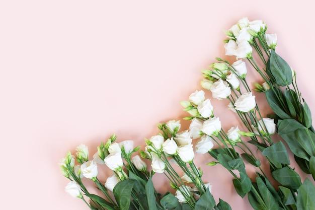 Нежные белые цветы эустомы на розовом фоне.
