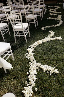 Tender white petals lie on the green grass along white chairs