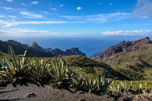 テネリフェ島。山の美しい空。青い空に白い雲