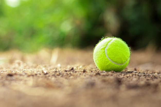 Tennis ball is discarded on the ground.