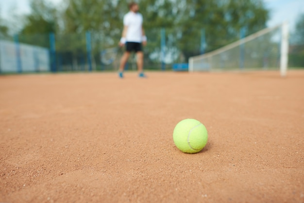 Tennis ball and man in the tennis court