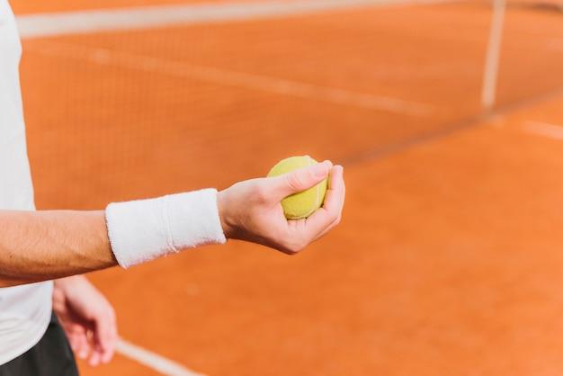 テニスボールを保持しているテニス選手