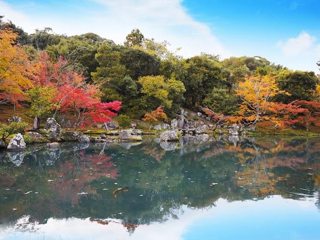 Сад виска tenryuji в осени на киото, японии.