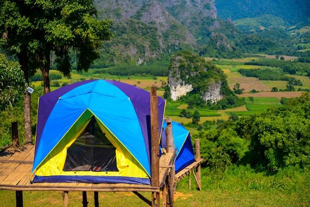 Палаточный лес на горных холмах фу-ланка на севере таиланда