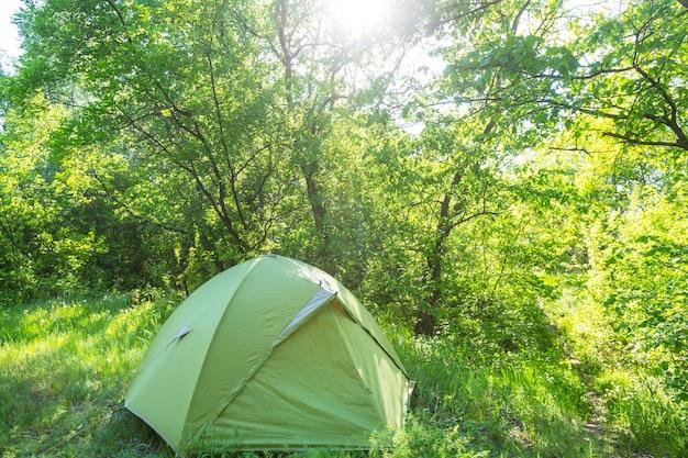 녹색 봄 숲에 텐트