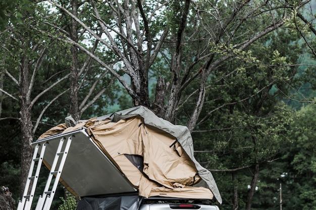 숲에서 캠퍼 밴 후드 위에 텐트
