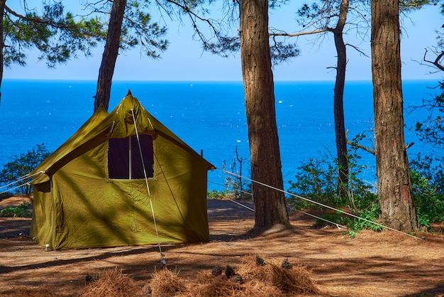 A tent in a pine forest on a cliff against the background of the sea