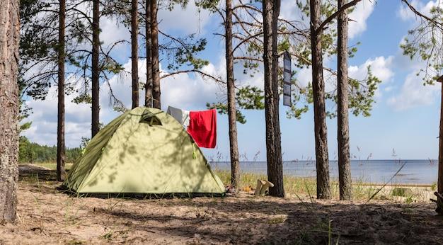 텐트는 모래 해변 근처 바다 해안에 소나무 숲에 서