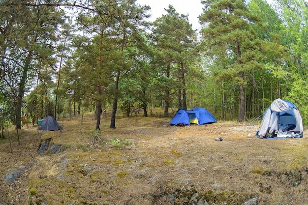 숲과 푸른 잔디에서 텐트. 임시 숙소를 만들어 자연과 더 가까이 여행