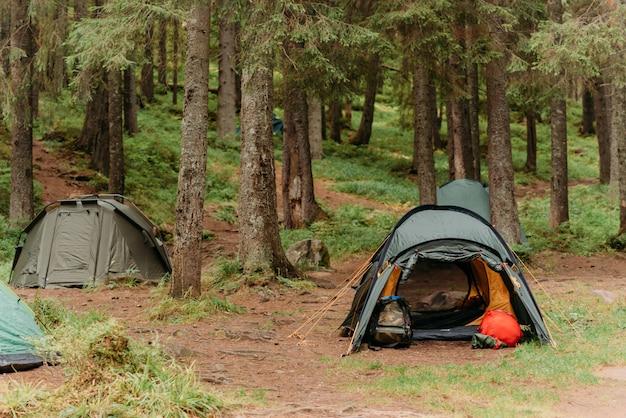 森の中の牧草地のテント