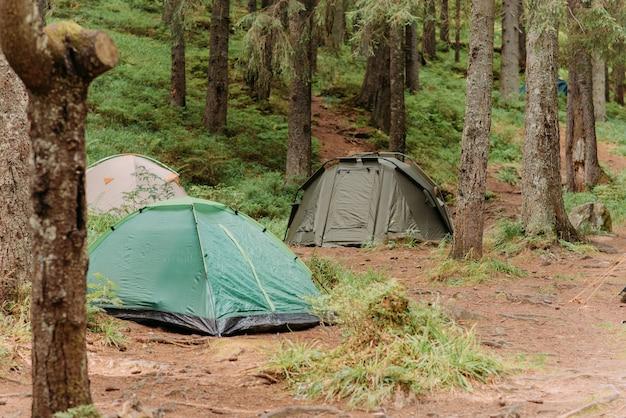 Палатки на лугу в лесу