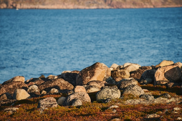 美しい夏の日の風景は、自然の海岸防衛北teriberka、バレンツ海の景色を放棄しました。