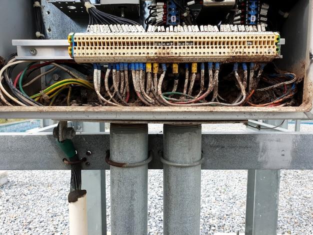 シロアリは115kv断路器スイッチの電気制御ボックス内にマウンドを構築します