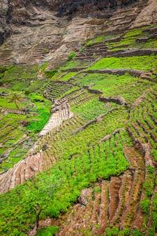 Террасные поля на острове санто-антао, кабо-верде