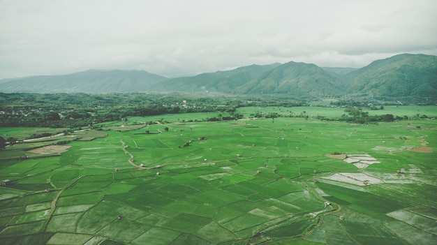 Terrace rice field aerial view in nan,thailand