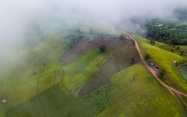 Террасное рисовое поле в мае чам в таиланде
