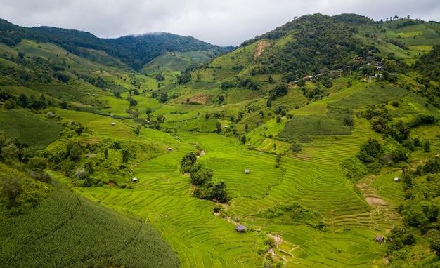 タイ北部の棚田ナンサパン